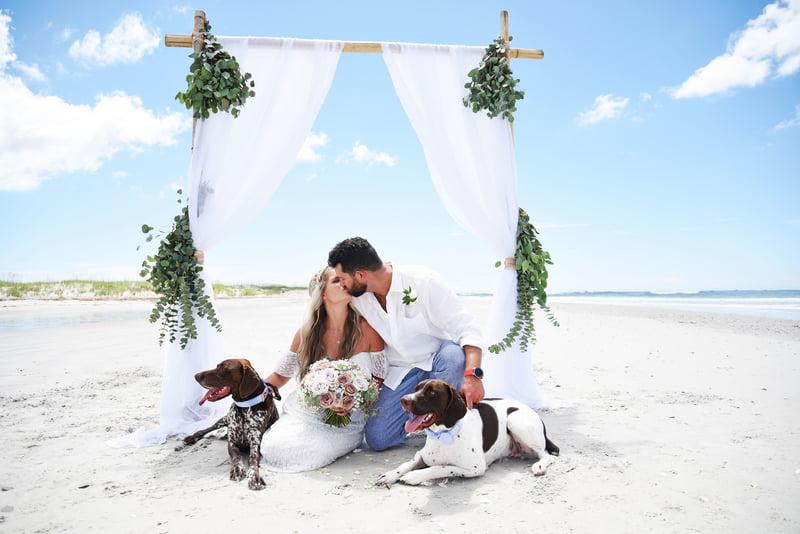 island wedding with dogs
